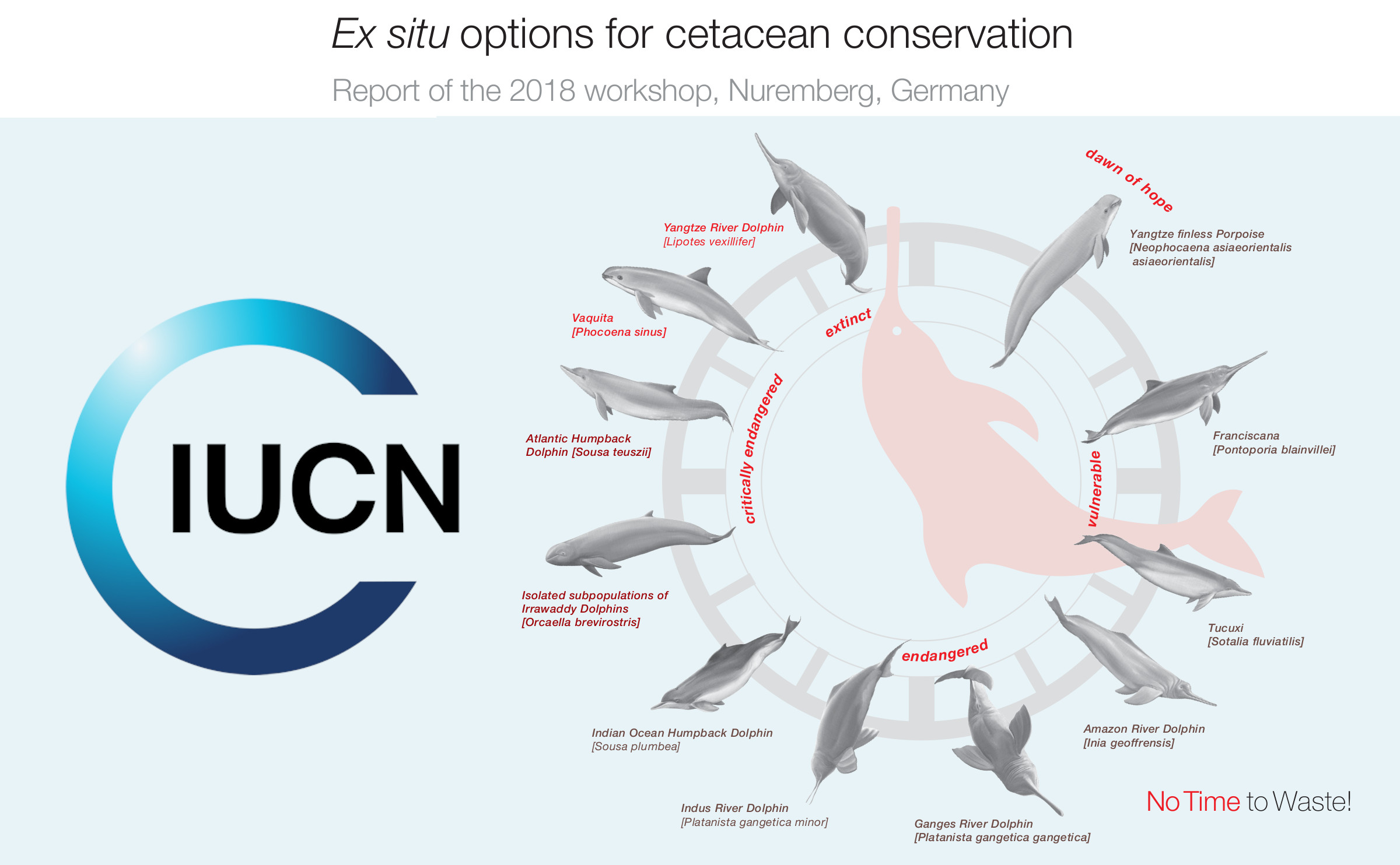 Loro Parque applauds the IUCN report, which confirms  that captive breeding is the hope for the salvation of many cetacean species