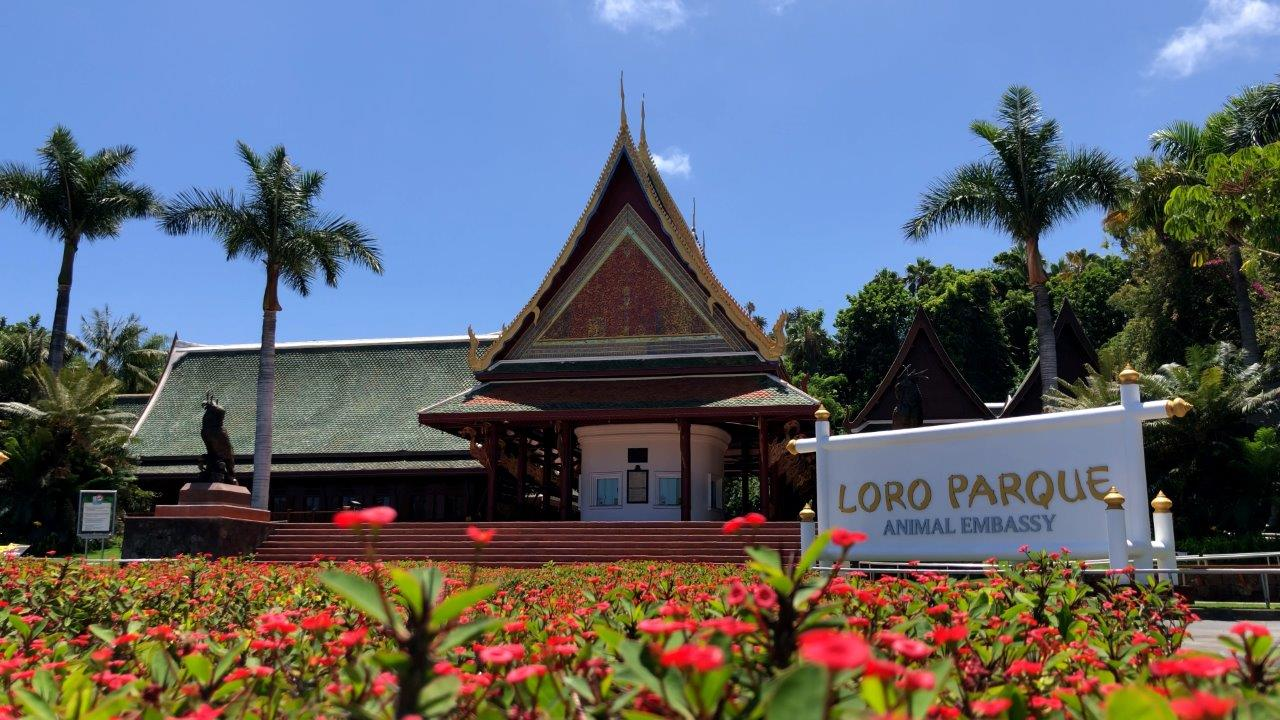 Loro Parque announces reopening after more than 13 months of closure